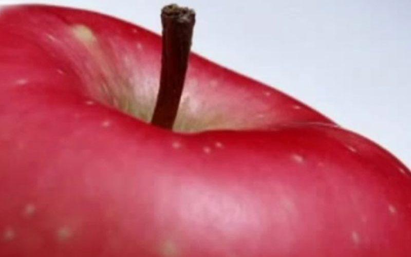 TV Rio Preto: Os benefícios da maçã para a saúde
