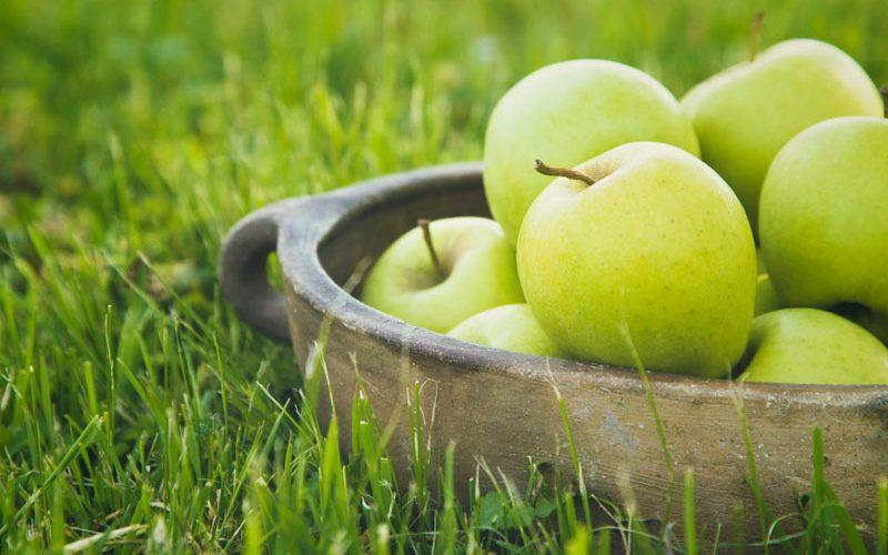 Maçã: A fruta que cuida do nosso Sangue